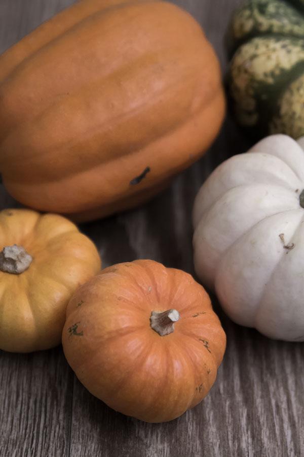 wordless-pumpkins