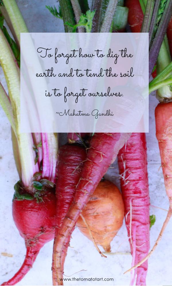 Gardening Quote from Gandhi